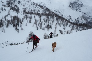 Skitour mit Patrik und Sunny